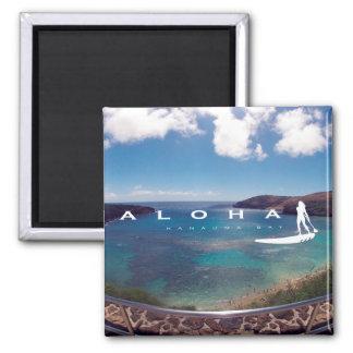 Las islas de Hawaii de la hawaiana - coloqúese Imán De Frigorifico