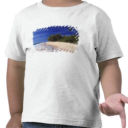 Las Islas Fiji, Tavarua. Esta playa en Tavarua, Camiseta