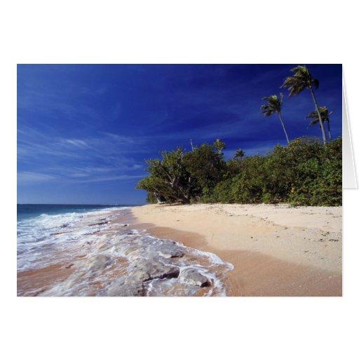Las Islas Fiji, Tavarua. Esta playa en Tavarua, Tarjetas