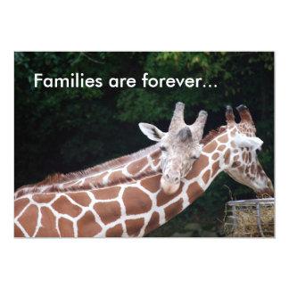 las jirafas que frotan los cuellos, familias están comunicado personal