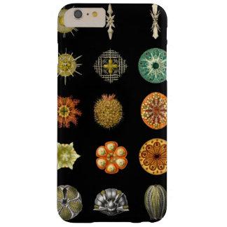 Las joyas submarinas de Ernst Haeckel Funda Barely There iPhone 6 Plus