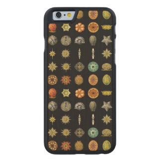 Las joyas submarinas de Ernst Haeckel Funda De iPhone 6 Carved® Slim De Arce