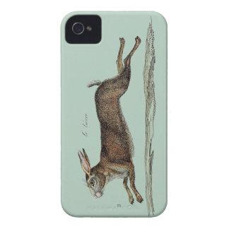 Las liebres que compiten con en Pascua iPhone 4 Case-Mate Coberturas