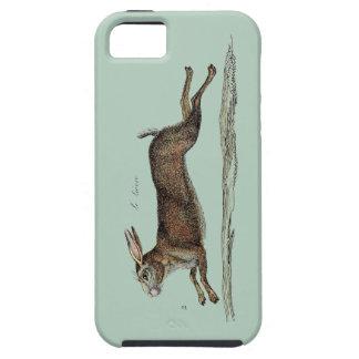 Las liebres que compiten con en Pascua iPhone 5 Funda