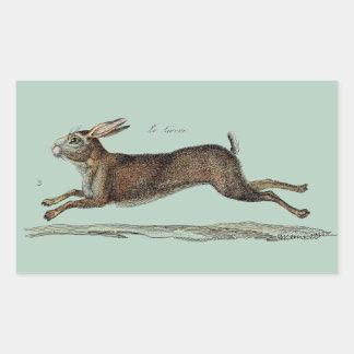 Las liebres que compiten con en Pascua Rectangular Pegatinas