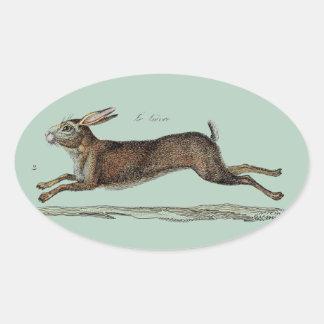 Las liebres que compiten con en Pascua Calcomanías Ovaladas Personalizadas