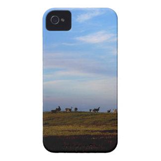 Las llamas en las praderas acercan a puesta del Case-Mate iPhone 4 cárcasas