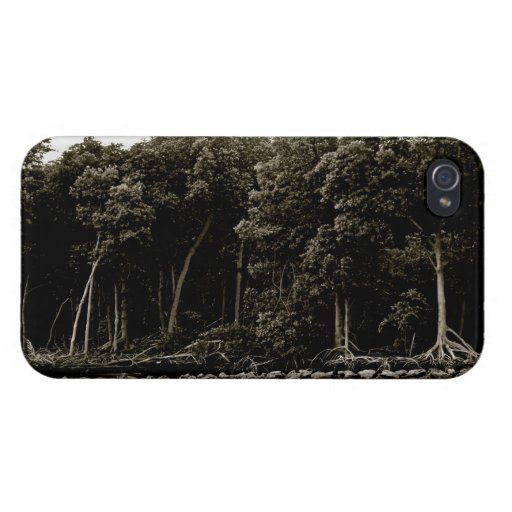 Las maderas - caso del iPhone 4/4S iPhone 4 Protector