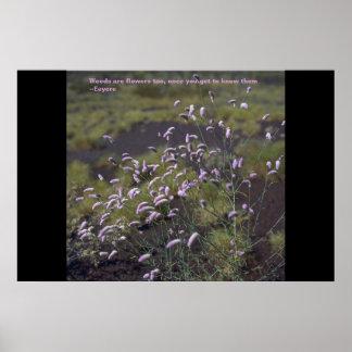 Las malas hierbas son flores también póster