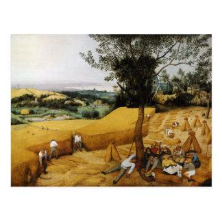 Las máquinas segadores de Pieter Bruegel el 1565 m Postal
