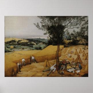 Las máquinas segadores de Pieter Bruegel la ancian Posters