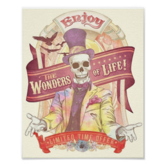 Las maravillas de la vida póster