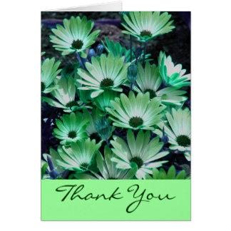 Las margaritas africanas verdes florales le agrade tarjetas