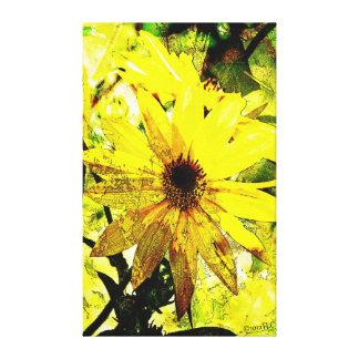 Las margaritas amarillas brillantes estiraron la i lienzo envuelto para galerias