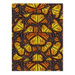 Las mariposas de Effie Tarjeta Postal