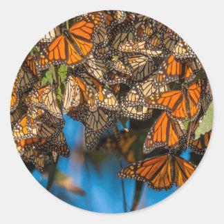 Las mariposas de monarca de la migración se etiquetas redondas