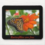 Las mariposas están libres alfombrillas de ratones