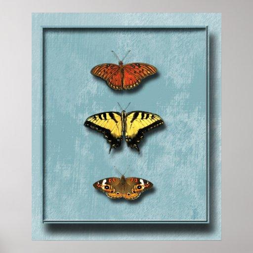 Las mariposas Shadowbox la impresión del poster
