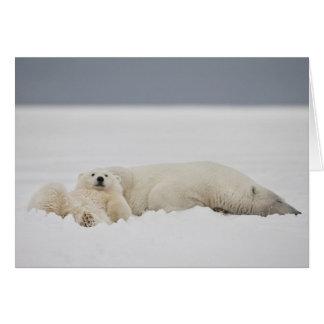 Las mentiras de un cachorro del oso polar en nieve felicitacion