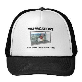 Las Mini-Vacaciones son parte de mi rutinario (el  Gorro