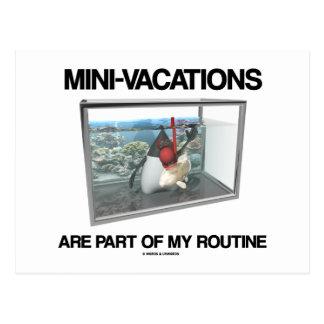 Las Mini-Vacaciones son parte de mi rutinario (el  Postales