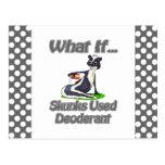 Las mofetas utilizaron el desodorante tarjeta postal