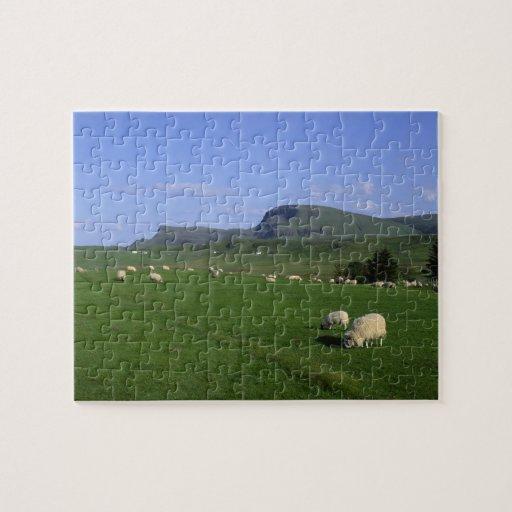 Las montañas de Quiraing, isla de Skye, montañas, Puzzle