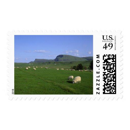 Las montañas de Quiraing, isla de Skye, montañas, Sello