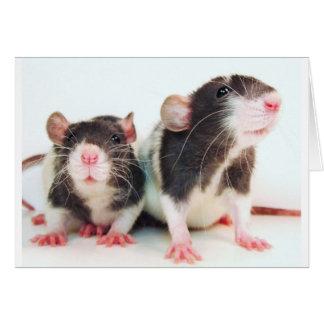 ¡Las mujeres reales poseen ratas! Tarjeta De Felicitación