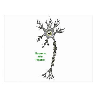 ¡Las neuronas son plásticas! Tarjetas Postales
