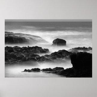 Las nieblas de la cala del árbol del té póster