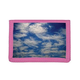Las nubes de cirro tienen gusto de volar de los án