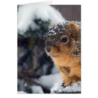 Las nueces congeladas consiguen bien pronto tarjeta de felicitación