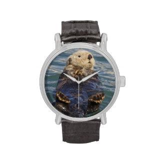 Las nutrias de mar juegan en los icebergs en la en relojes de pulsera