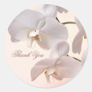 Las orquídeas blancas le agradecen pegatina