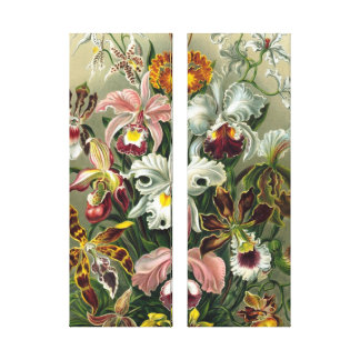 Las orquídeas del vintage se dirigen la impresión  lienzo envuelto para galerias