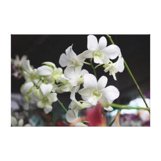 Las orquídeas hermosas envolvieron la impresión de impresión en lienzo estirada