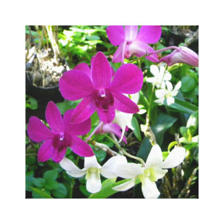 Las orquídeas magentas envolvieron la lona impresión en lienzo
