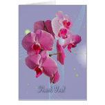 Las orquídeas rosadas le agradecen cardar tarjetón