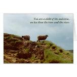 Las ovejas pastan en una tarjeta de los desiderátu