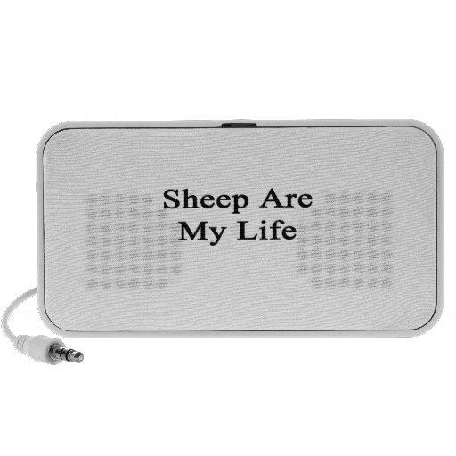 Las ovejas son mi vida laptop altavoz