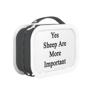 Las ovejas son sí más importantes