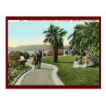 Las palizadas, vintage de Santa Mónica Postales