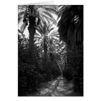 Las palmas y los árboles anaranjados acercan a tarjeta de felicitación