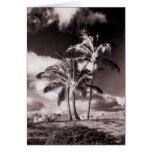Las palmeras hawaianas de la sepia retra modificar tarjeton