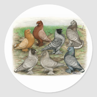 Las palomas clásicas del volante ataron etiqueta redonda