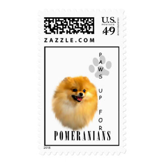 Las patas de Pomeranian para arriba sellan