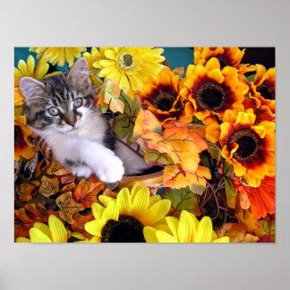 Las patas lindas del gatito w del gato del gatito  posters