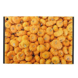 Las pequeñas calabazas anaranjadas de la cosecha e