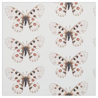 Las pequeñas mariposas de Apolo tejaron la tela Telas